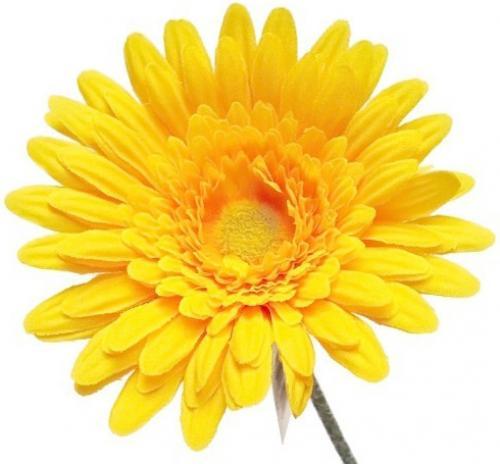 Výrobek Vonná esence - Květina Healthland